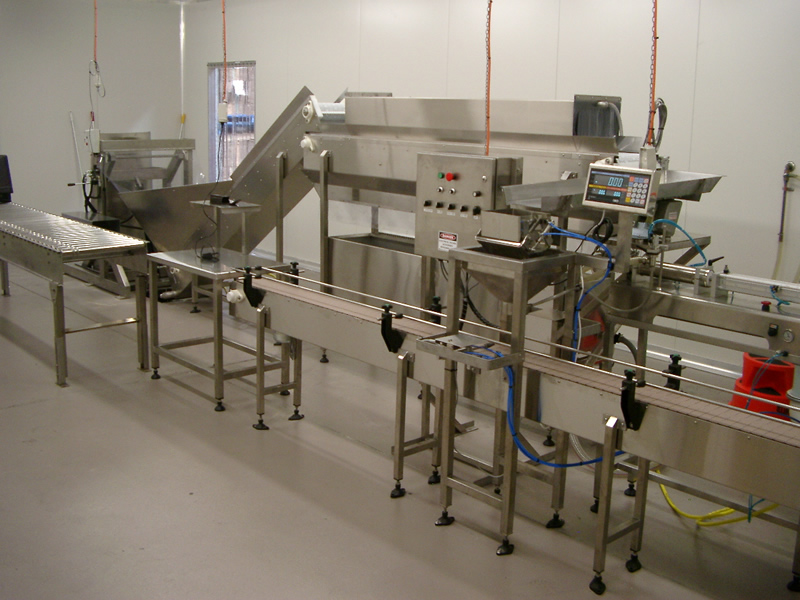 Olive Packing Line Allpack Designs And Solutions